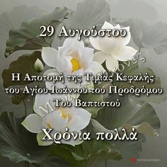 Name Day, Pray, Plants, Cards, Recipes, Pictures, Beauty, Photos, Rezepte
