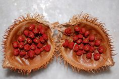 If you're not familiar with this sight, you're most likely not Brazilian. These strange red seeds are called urucum (bixa orellana), a typical addition to Brazilian dishes, used as a natural and flavorless food coloring alternative.