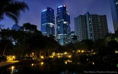 Hong Kong Park at Night Hong Kong Architecture, Amazing Architecture, Hong Kong Building, Empire State Building, New York Skyline, How To Memorize Things, Park, Night, Towers