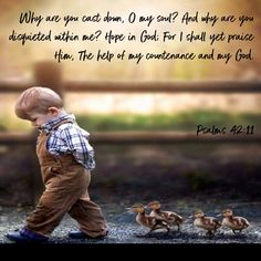 Psalms Why are you cast down, O my soul? Hope in God; For I shall yet praise Him, The help of my countenance and my God. Hope In God, Faith In God, Picture Quotes, Love Quotes, Inspirational Quotes, O My Soul, Proverbs 22, Train Up A Child, New King James Version
