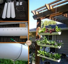 Short on garden space, but longing for your own vegie patch? What about this clever DIY project? Easily accomplished in a weekend, the planter boxes are made from recycled guttering. Outdoor Projects, Easy Diy Projects, Garden Projects, Garden Ideas, Diy Hanging, Hanging Planters, Painting Gutters, Gutter Garden, Vertical Planter