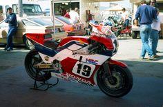 Freddie NS500