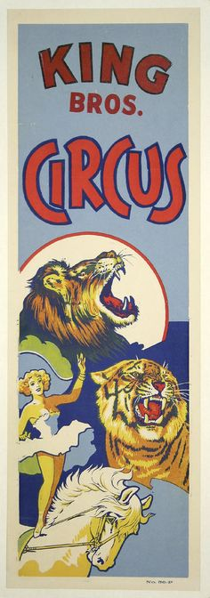 Circus Lion and Tiger Girl on Horse