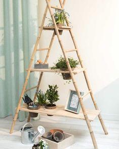 An ingenious and aesthetic DIY from two bamboo ladders and three . Un DIY ingénieux et esthétique à partir de deux échelles en bambou et de tro… An ingenious and aesthetic DIY from two bamboo ladders and three wooden shelves Interior Garden, Diy Interior, Bamboo Ladders, Bamboo Shelf, Diy Rangement, Diy Casa, Bamboo House, Bamboo Crafts, Bamboo Design