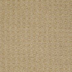 "Gorgeous Carpeting in style ""Luxe"" - color Camel - Ultimate in softness and style - Flooring by Shaw"