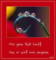 gezegden spreuken 23 beste afbeeldingen van spreekwoorden & gezegden   Dutch quotes  gezegden spreuken