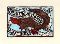 Platypus Linocut Art Print by HorseAndHare on Etsy, $20.00