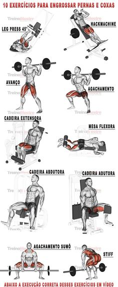 10 exercícios para engrossar pernas e coxas com vídeos (visitar artigo). - Γυμναστική - Welcome Home Fitness Workouts, Fitness Motivation, Muscle Fitness, Mens Fitness, Gym Time, Weight Training, Build Muscle, Pnf Stretching, Dynamic Stretching