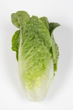 Compact Mini Cos type for warm weather production twin packs with excellent compact heart shape, and sweet taste. Usually around height depending on time of year. Lettuce Seeds, Head Shapes, Cos, Agriculture, Warm Weather, Green Colors, Compact, Cabbage, Twin