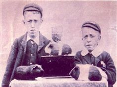 """National Agouti Cavy Club UK: Keighley Championship Show 1906. Two """"thrilled"""" young exhibitors photographed with their prize-winning cavies. The guinea pig pictured bottom left is a Golden Agouti."""