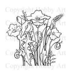 Hobby Art - Poppies Clear stamp from the Sharon Bennett Collection. Drawing Sketches, Drawings, Drawing Practice, Digi Stamps, Needle And Thread, Clear Stamps, Poppies, Moose Art, Flowers