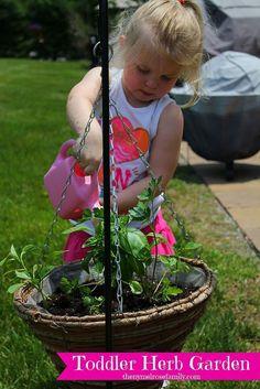 Precious {Toddler} Herb Garden!