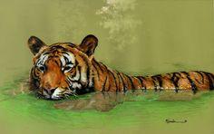 "Saatchi Art Artist Marc Gosselin; Drawing, ""Tiger"" #art"