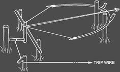 """Résultat de recherche d'images pour """"bow trap"""""""