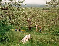 Justine Kurland is a contemporary American photographer. View Justine Kurland's artworks on artnet. Learn about the artist and find an in-depth biography, exhibitions, original artworks, the latest news, and sold auction prices. New York Times, Justine Kurland, Lise Sarfati, Summer Aesthetic, Teenage Dream, Northern Italy, Jolie Photo, Photo Instagram, Country Life