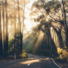 Grampions national park-Victoria-Australia