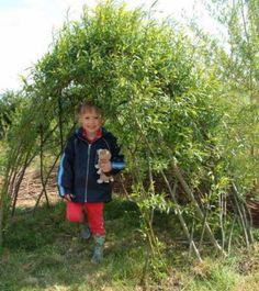 willow kit...Small Dome