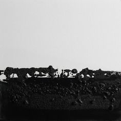 blackland I, Koen Lybaert oil and coal on canvas on wood