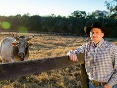 """""""O Grito do Bicho"""": Aposentados, touros de Barretos vão para asilo com..."""