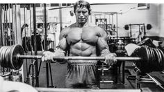 31 Arnold-Approved Training Tips - Bodybuilding.com http://www.bodybuilding.com/fun/31-arnold-approved-training-tips.html