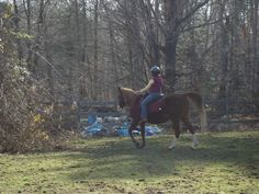 Me horse-back riding in Maine, 2010