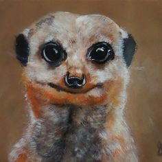 Simples! - Meerkat
