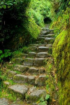 Are you interested in visiting Machu Picchu via the Inca Trail? Contact us and we offer the best routes to access Machu Picchu by ancient paths used by the Incas Hiking the Inca trail - Peru Beautiful World, Beautiful Places, Beautiful Stairs, Beautiful Boys, Sherwood Forest, Stairway To Heaven, Machu Picchu, Abandoned Places, Pathways