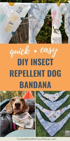 Easy DIY Insect Repellent Dog Bandana - Do you hike or camp with your dog? Turn your favorite dog bandana into a tick and mosquito shield! Tick Repellent For Dogs, Insect Repellent, Mosquito Repellent For Dogs, Diy Tumblr, Mosquitos, Hiking Dogs, Dog Wear, Dog Costumes, Dog Coats