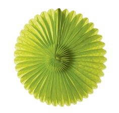 WeGlow International WeGlow International 14 Rice Paper Flower  Light Green Pack Of 3 -- Visit the image link more details. (Note:Amazon affiliate link)