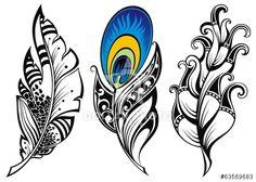 http://cz.dollarphotoclub.com/stock-photo/Set of feathers/63569683 Dollar Photo Club miliony kvalitních obrázků za 1$ za každý