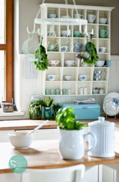 Minty House Blog : Herbata poleci do...