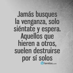 Wisdom Quotes, True Quotes, Best Quotes, Positive Phrases, Motivational Phrases, Spanish Inspirational Quotes, Spanish Quotes, You Lied To Me, Quotes En Espanol