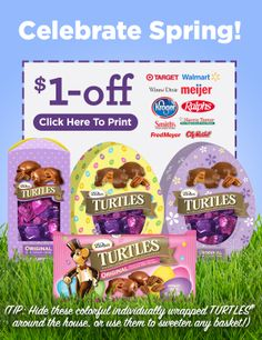 Saving 4 A Sunny Day: $1 Off DeMet's Turtles
