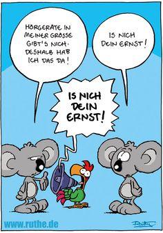 Die 797 Besten Bilder Von Nicht Lustig Ruthe Funny Images Fanny