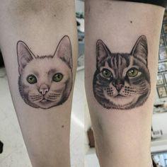 "tuula aikioniemi (@tuulaaikioniemitattoos), ""small kitty portraits from last week"""