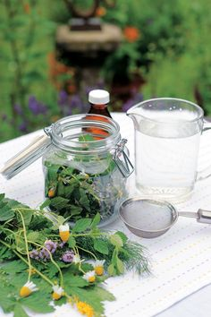 Relieve Diarrhea with a Toning Tincture Recipe - Health and Wellness - Mother Earth Living