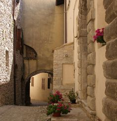 http://pixdaus.com/unnamed-alley-by-fataetoile-cinza-rizzo-flowers-italy-montel/items/view/197758/