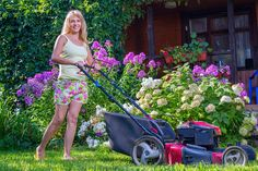 Simple Buying Guide for the Lawn Mowers for Sale Types Of Lawn, Best Lawn Mower, Grass Carpet, Mowers For Sale, Riding Lawn Mowers, Garden Maintenance, Get Fresh, Why People, Garden Supplies