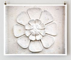 Stone Flower, Paris Photography, French Art Print, White Wall Art, Cottage Decor on Etsy, $28.00