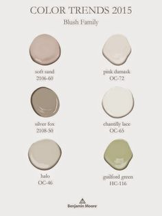Benjamin Moore's 2015 Color of the Year (and Color Trends!) - Evolution of Style