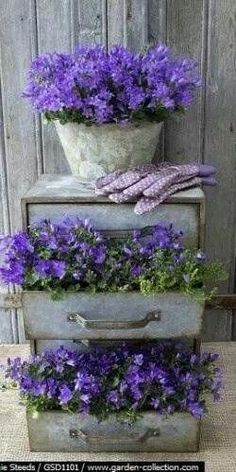 Thrilling About Container Gardening Ideas. Amazing All About Container Gardening Ideas. Vintage Garden Decor, Vintage Gardening, Organic Gardening, Gardening Tips, Gardening Direct, Gardening Zones, Kitchen Gardening, Hydroponic Gardening, Container Flowers