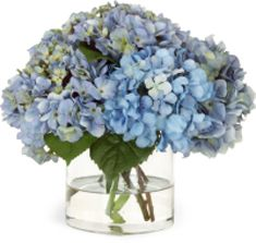 Flores para sua casa | Casamenteiras