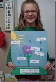 What Plants Need- The Tiny Seed by Eric Carle