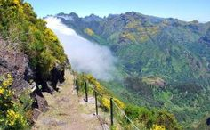 Madeira: walking on the wild side - Telegraph