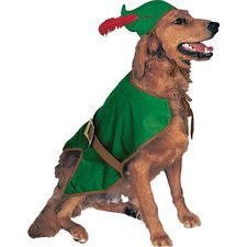 Robin Hood Dog Costume