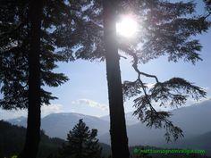 trekking sulle montagne di Whistler, BC