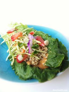 Raw Seed Cheese Wraps (This recipe is gluten free, grain free, dairy free, raw, vegan, light and fresh!) http://www.damyhealth.com/2012/07/raw-seed-cheese-wraps/