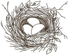 Nest - Eggs_image