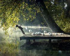 bory tucholskie by Mariusz Warsinski on 500px