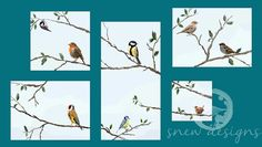 garden birds   robin   blue tit   great tit   goldfinch   wren   coal tit   sparrow   snewdesigns   Commissions